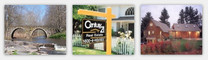 Century 21 Country Realty Banner