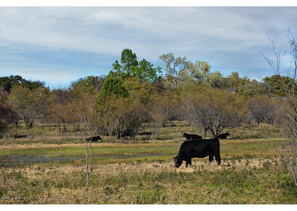 Photo of Bridgeport, TX 76426
