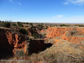 Photo of 86 Canyons Ranch Other - Not In List, TX 79261
