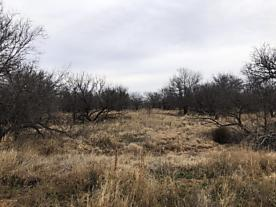 Photo of FM 2875 Childress, TX 79201