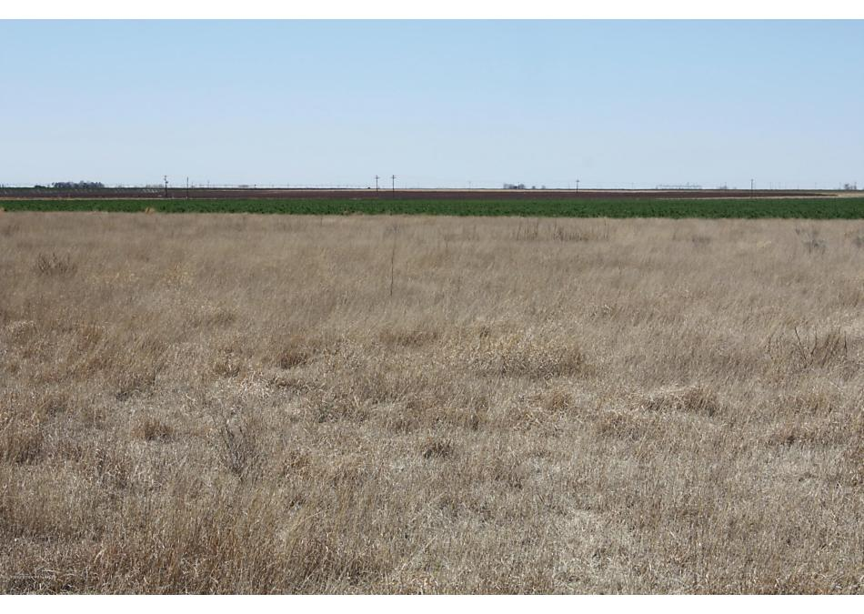 Photo of 00 CO RD EE Muleshoe, TX 79347