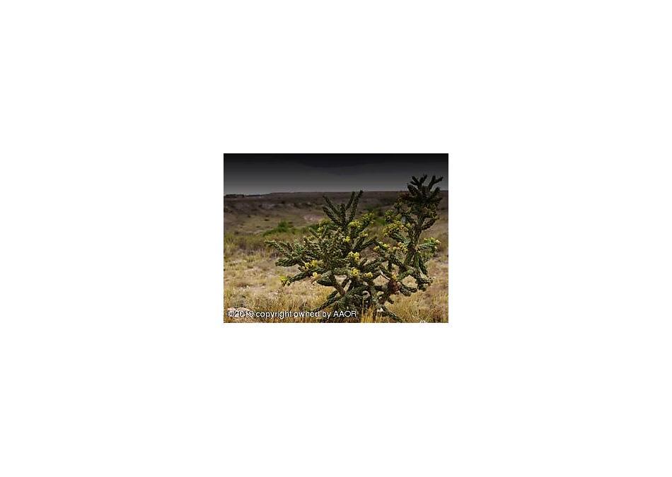 Photo of 2600 BUTTE CIR Amarillo, TX 79124