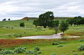 Photo of 5800 Farm to Market 1547 Shamrock, TX 79079