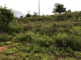 Photo of Lot: 102 Coon Dr. Fritch, TX 79036