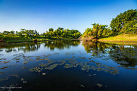 Photo of Buffalo Springs Ranch Hedley, TX 79237