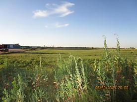 Photo of 303 46TH AVE Amarillo, TX 79118