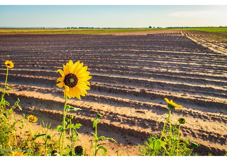 Photo of Brice Farm Clarendon, TX 79226