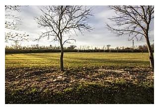 Photo of 0 Saltzgaber Rd. Lot #2 Groveport, Ohio 43125