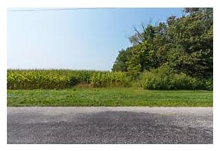 Photo of Whipple Road Delaware, Ohio 43015