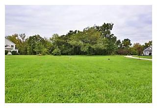 Photo of 2320 Wildcat Run Court Powell, OH 43065