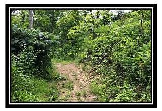 Photo of 2525 Leeth Creek Road Waverly, OH 45690
