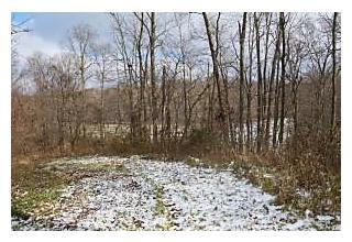 Photo of 2932 Mounts Road Alexandria, OH 43001