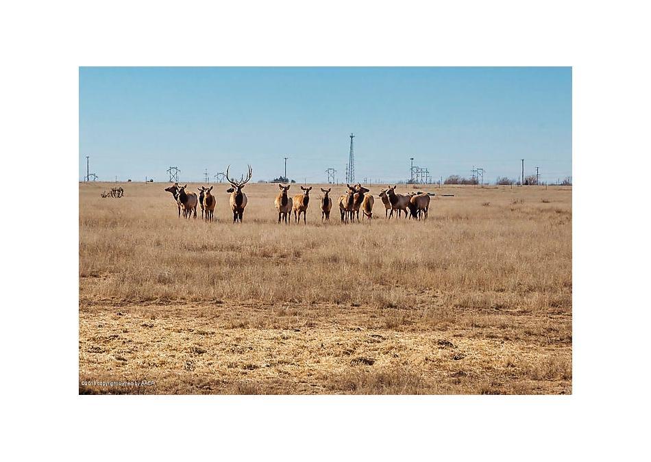 Photo of 11880 Equestrian Trl Amarillo, TX 79118