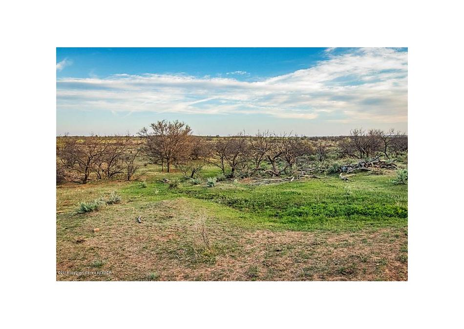 Photo of Jones Ranch Wellington, TX 79095