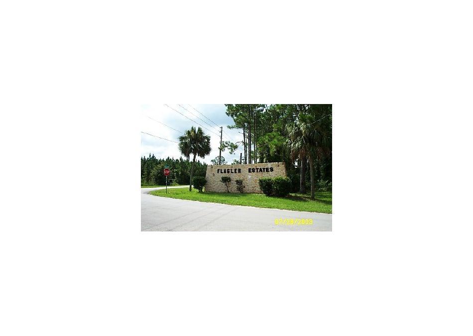 Photo of 10420 Stycket Ave Hastings, FL 32145