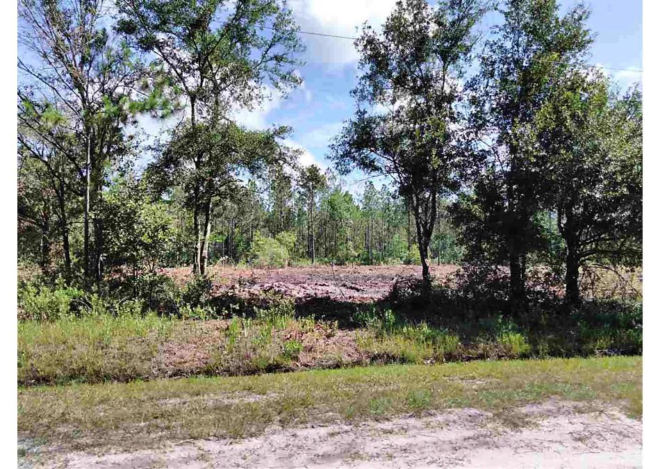 Photo of 4250 & 4260 Guy St Hastings, FL 32145