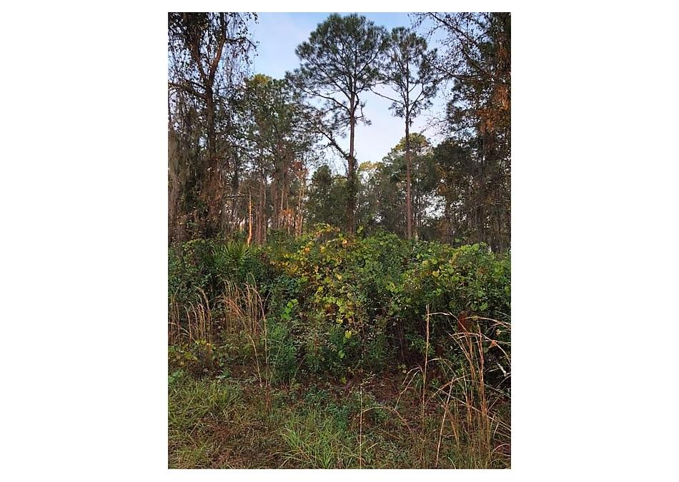 Photo of 287 E River Road (a) East Palatka, FL 32131