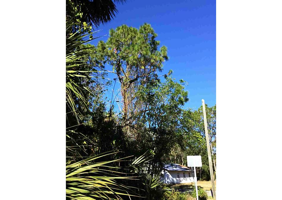 Photo of 1050 Butler Ave St Augustine, FL 32084