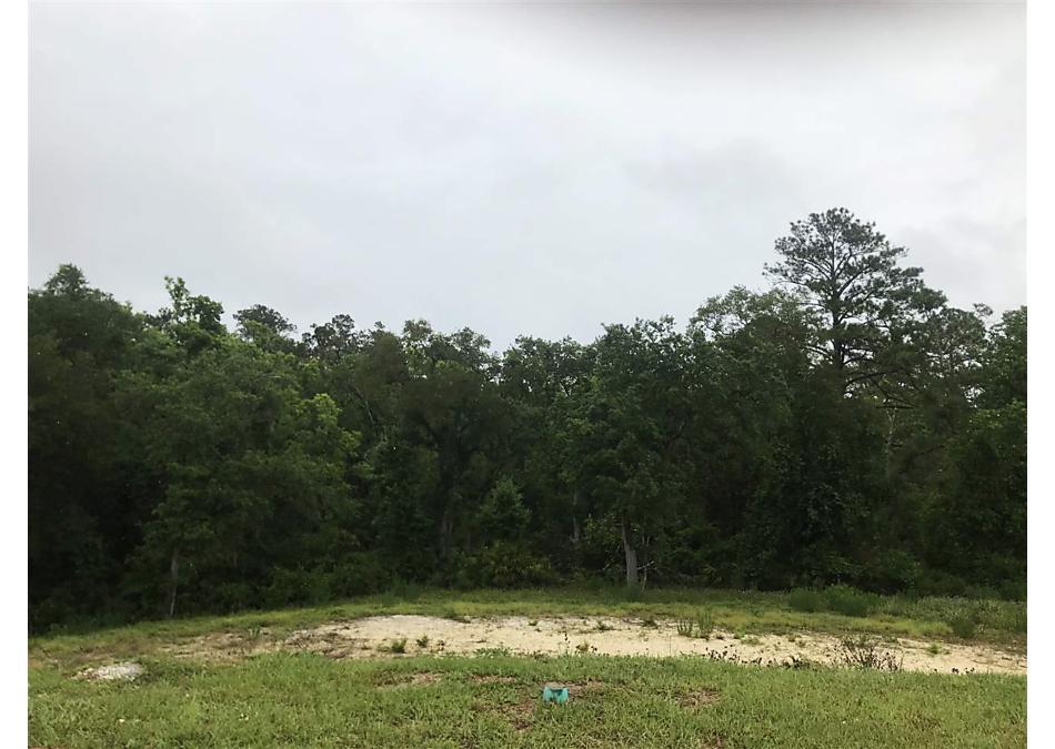 Photo of 491 Gianna Way St Augustine, FL 32086