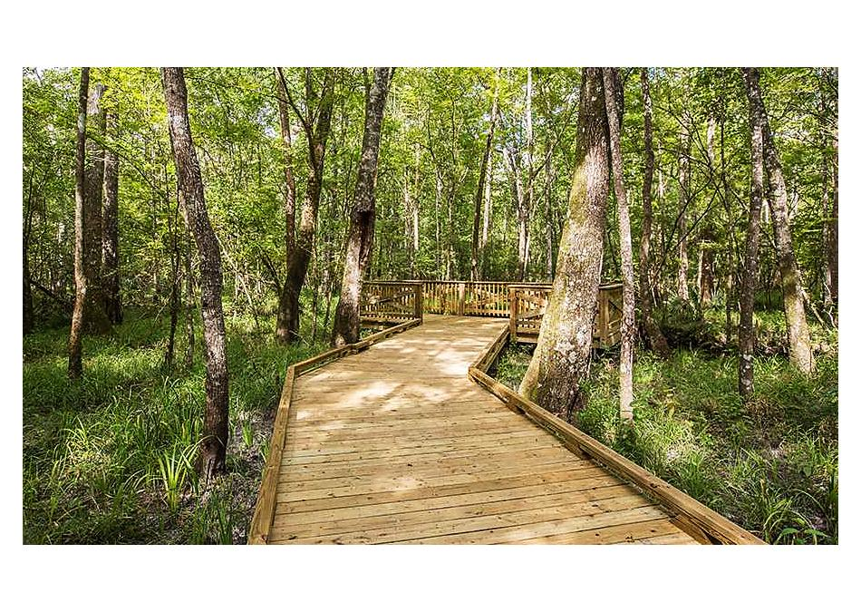 Photo of 197 Palisade Drive St Augustine, FL 32092