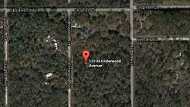 Photo of 10230 Underwood Ave Hastings, FL 32145
