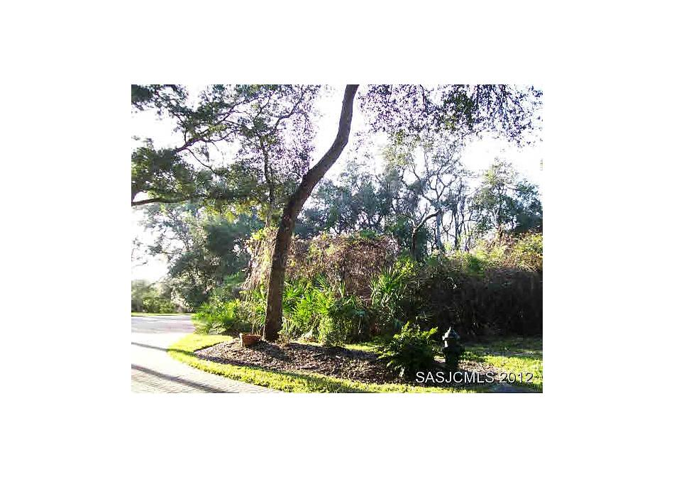 Photo of 217 Golden Oaks Ln St Augustine, FL 32080