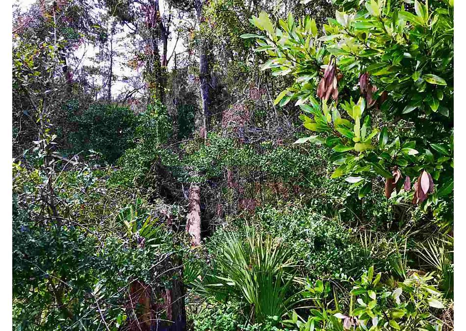 Photo of St. Johns Medical Park Dr. St Augustine, FL 32086