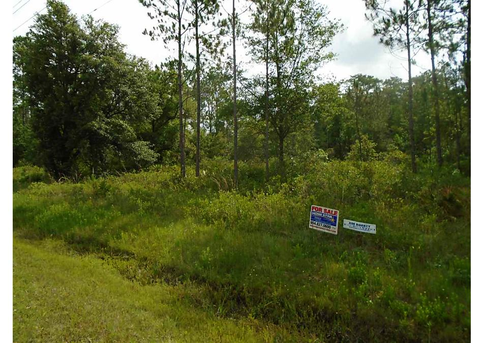 Photo of 10680 Yeager Ave. Hastings, FL 32145