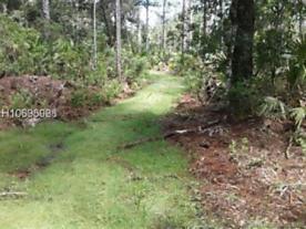 Photo of 10510 Zigler Avenue Hastings, FL 32145