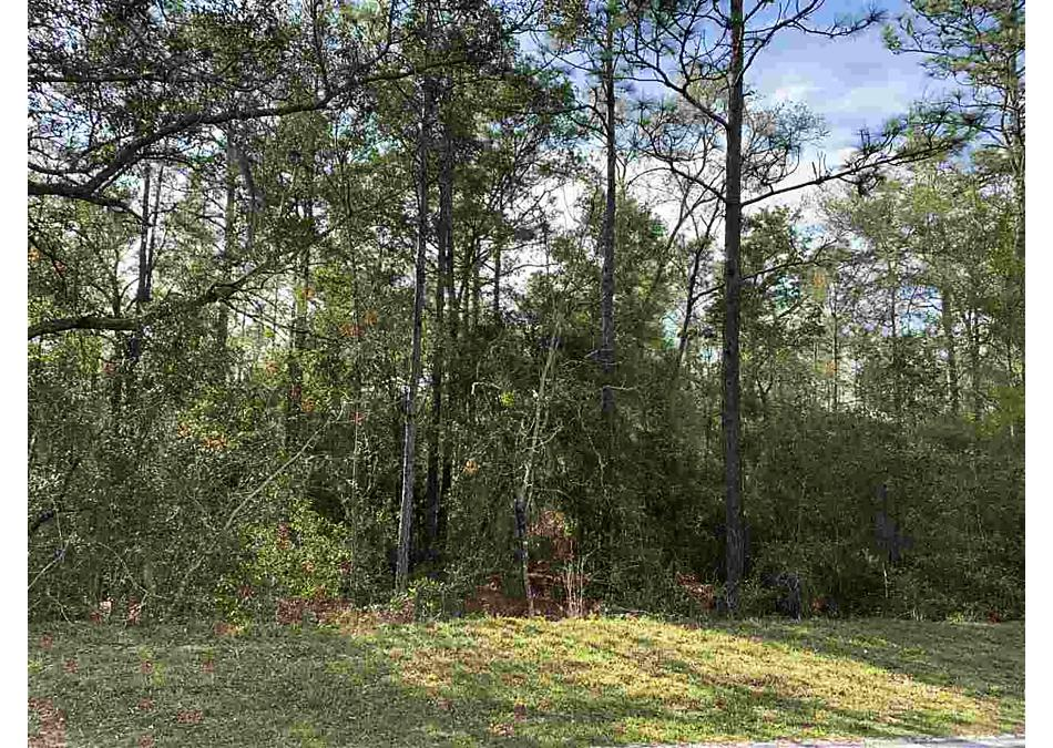 Photo of 1219 Baden Powell Road Hawthorne, FL 32640