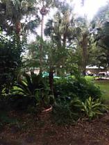 Photo of 509 B St St Augustine Beach, FL 32080