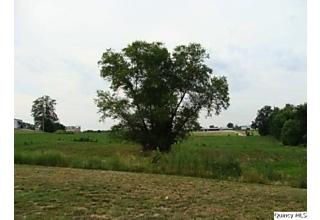 Photo of Hwy 61/1st New London, MO 63459