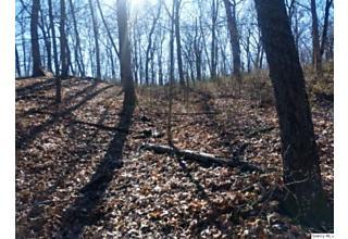 Photo of Nw Sec 12 15 Acres M/l Liberty, IL 62347
