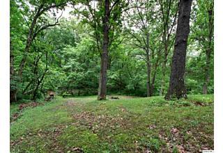 Photo of 2400 Cedar View Dr Fowler, IL 62338