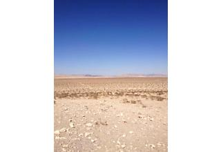 Photo of 0 None N/a Lucerne Valley, CA 92356