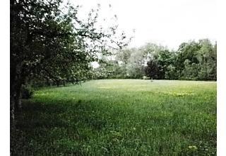 Photo of Lot A  Couch Road Patterson, NY 12563
