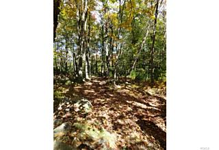 Photo of North Road Forestburgh, NY 12777