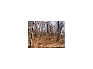 Photo of 20   Woodlands Trail Clinton Corners, NY 12514