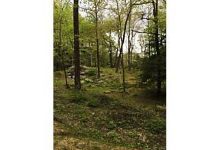 Photo of Pine Hill Road Tuxedo Park, NY 10987