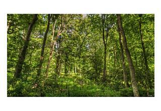 Photo of 224 Sylvan Lake Road Hopewell Junction, NY 12533