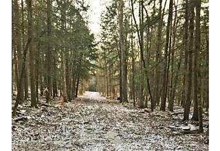 Photo of 706 Swamp Pond Road Narrowsburg, NY 12764