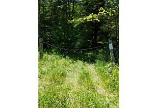 Photo of Brown Road Wawarsing, NY 12489