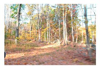 Photo of Plattekill, NY 12568